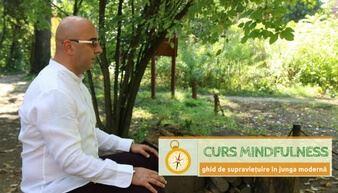 curs mindfulness