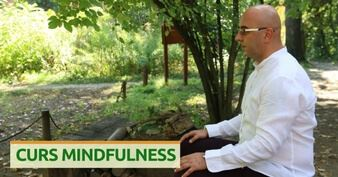 curs mindfulness online