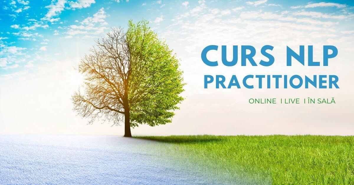 curs nlp practitioner