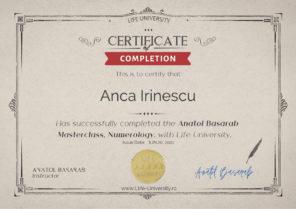 Curs Anatol Basarab