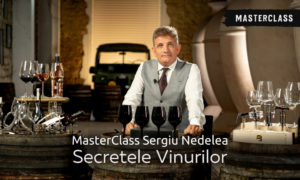 Masterclass Sergiu Nedelea